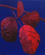 Autumnal Briar Leaves2