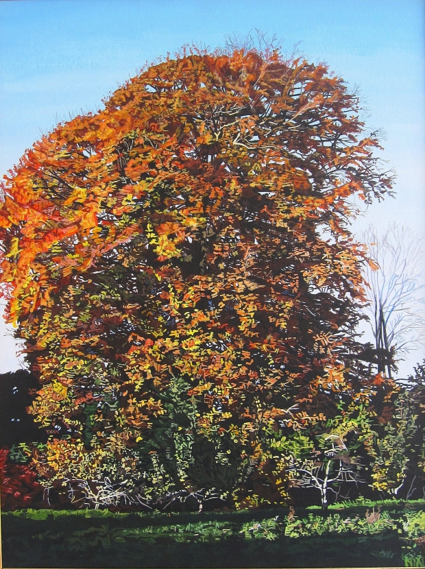 Autumnal Tree in Carew's Wood
