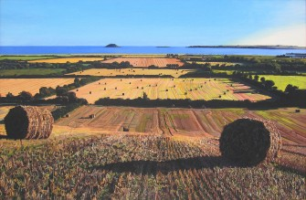 autumnal view of garryvoe2