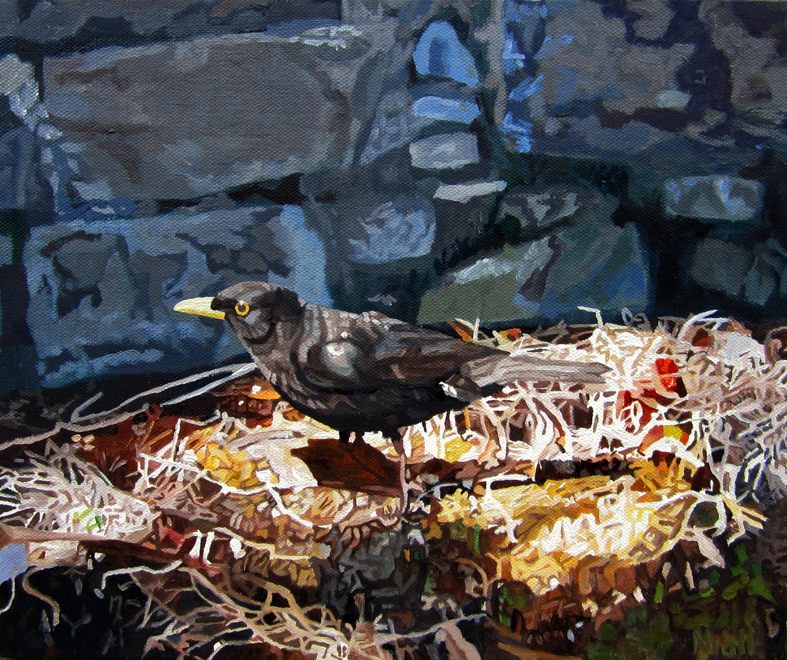 Blackbird in a Sunbeam