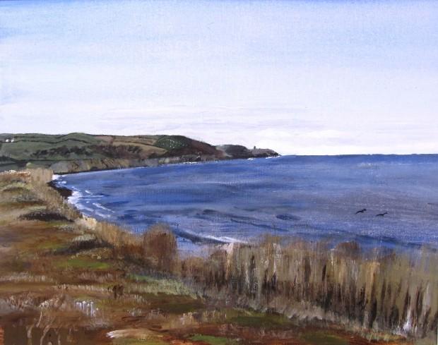 Knockadoon Peninsula