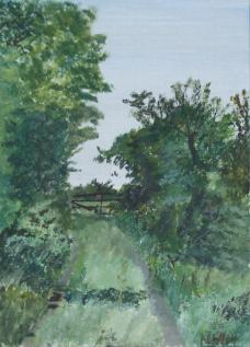 Long Garden Laneway