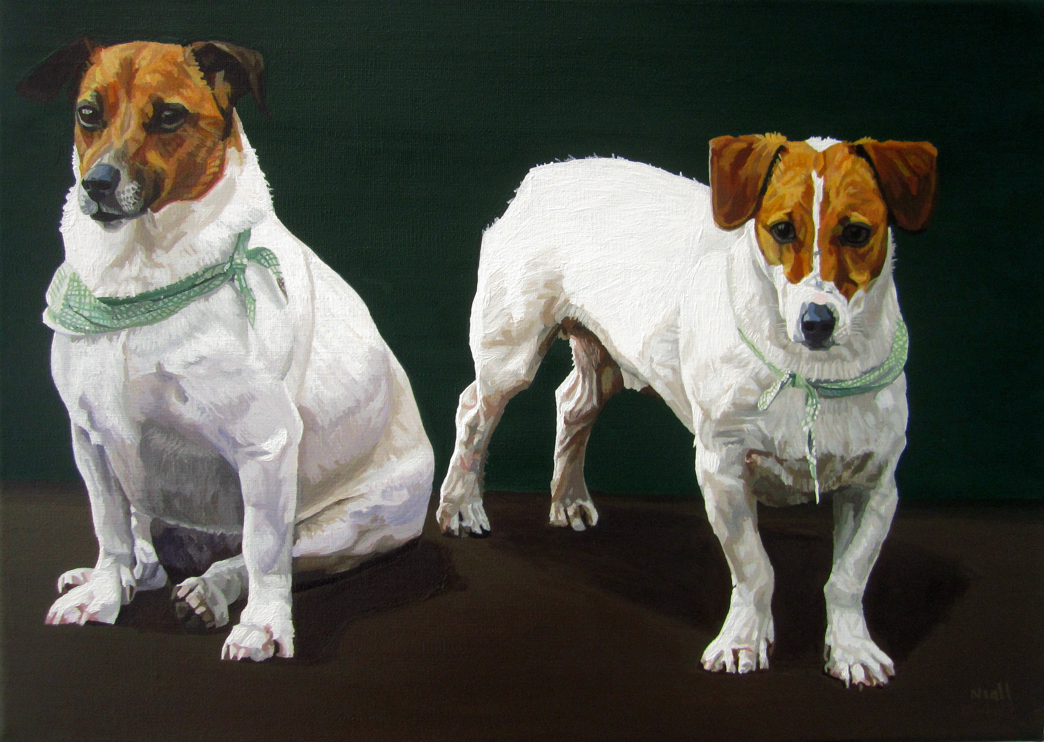 Two Jack Russell Dogs