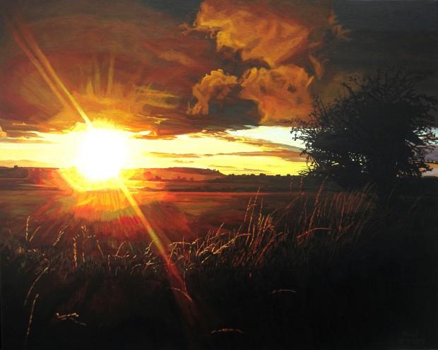 Dazzling Sun, Shadowy Hawthorn