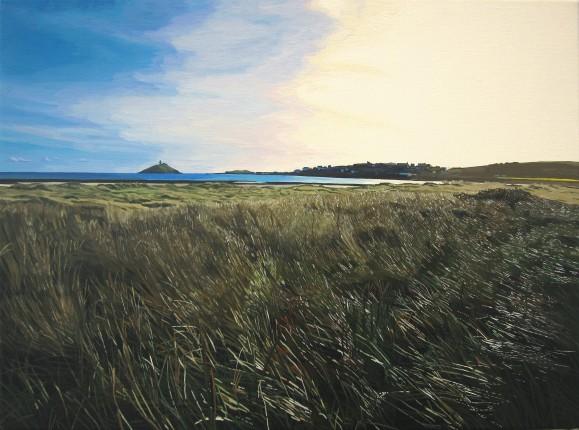 Glistening Beach Grass near Ballynamona Strand