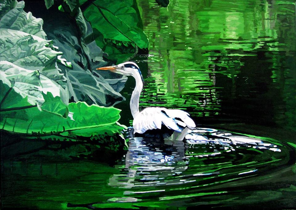 Heron Swimming In The Pond At Fota Gardens