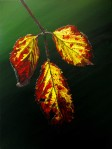 Autumnal Briar Leaves 5