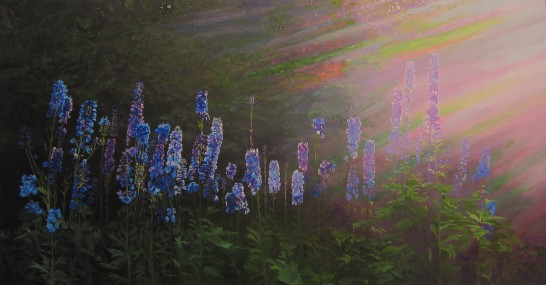 Delphiniums backlit by Evening  Sunlight