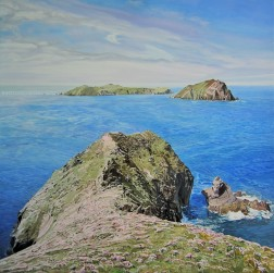 Near the end of the great blasket island watermark