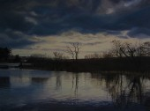 Ballyhonock Lake In February