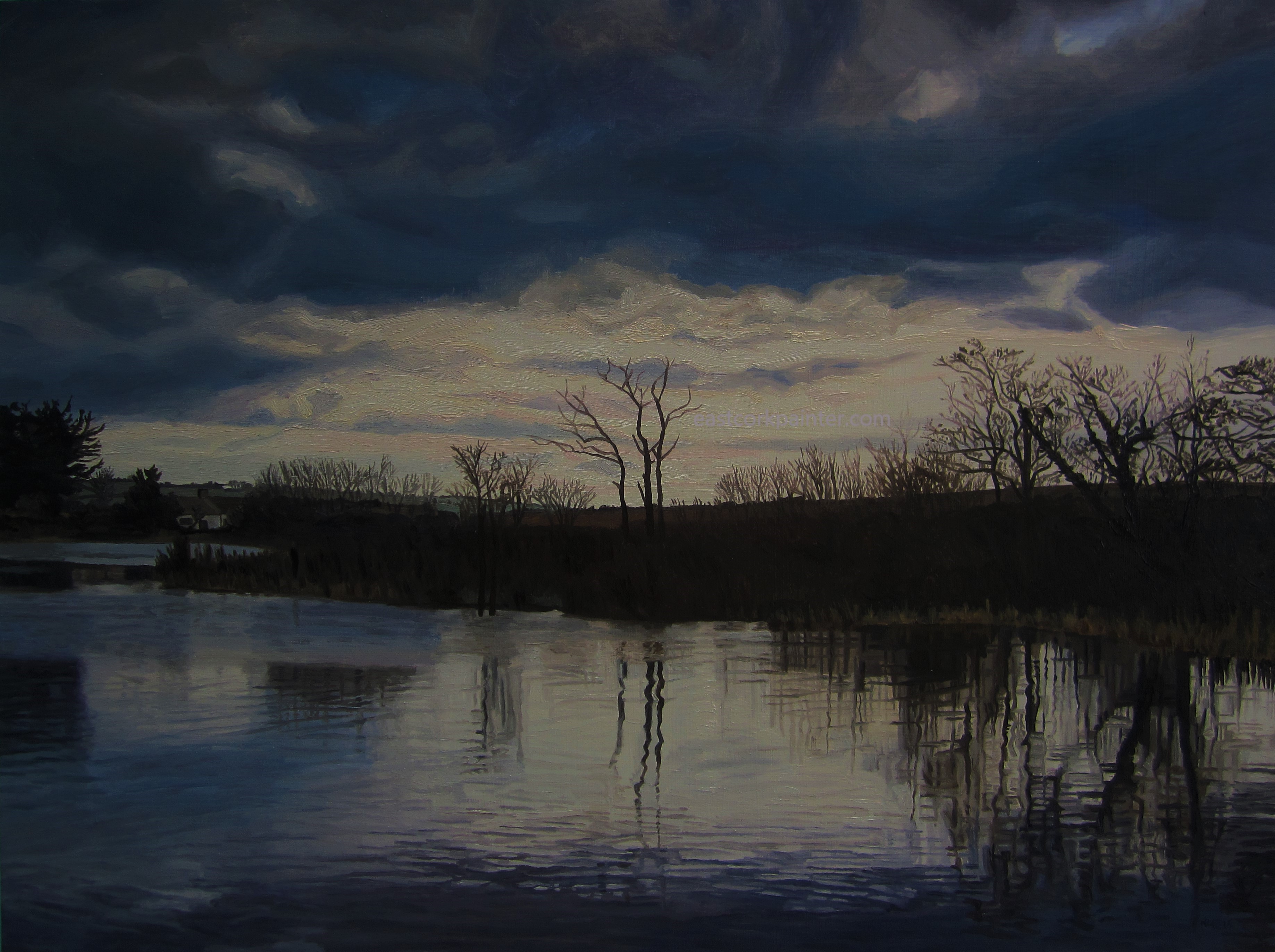 Ballyhonock Lake watermark