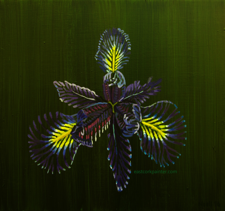 Deconstructed Iris Flower watermark
