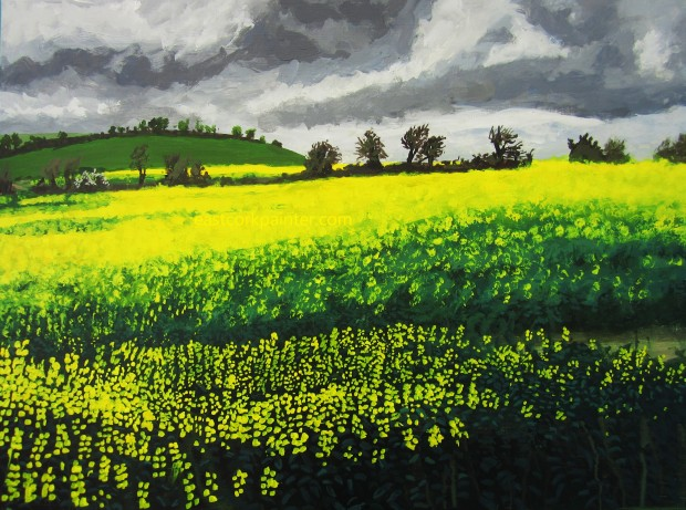Field of Oilseed Rape Near Mullins's Cross watermark