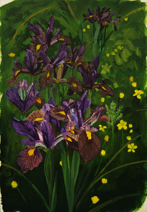 Irises and Buttercups watermark