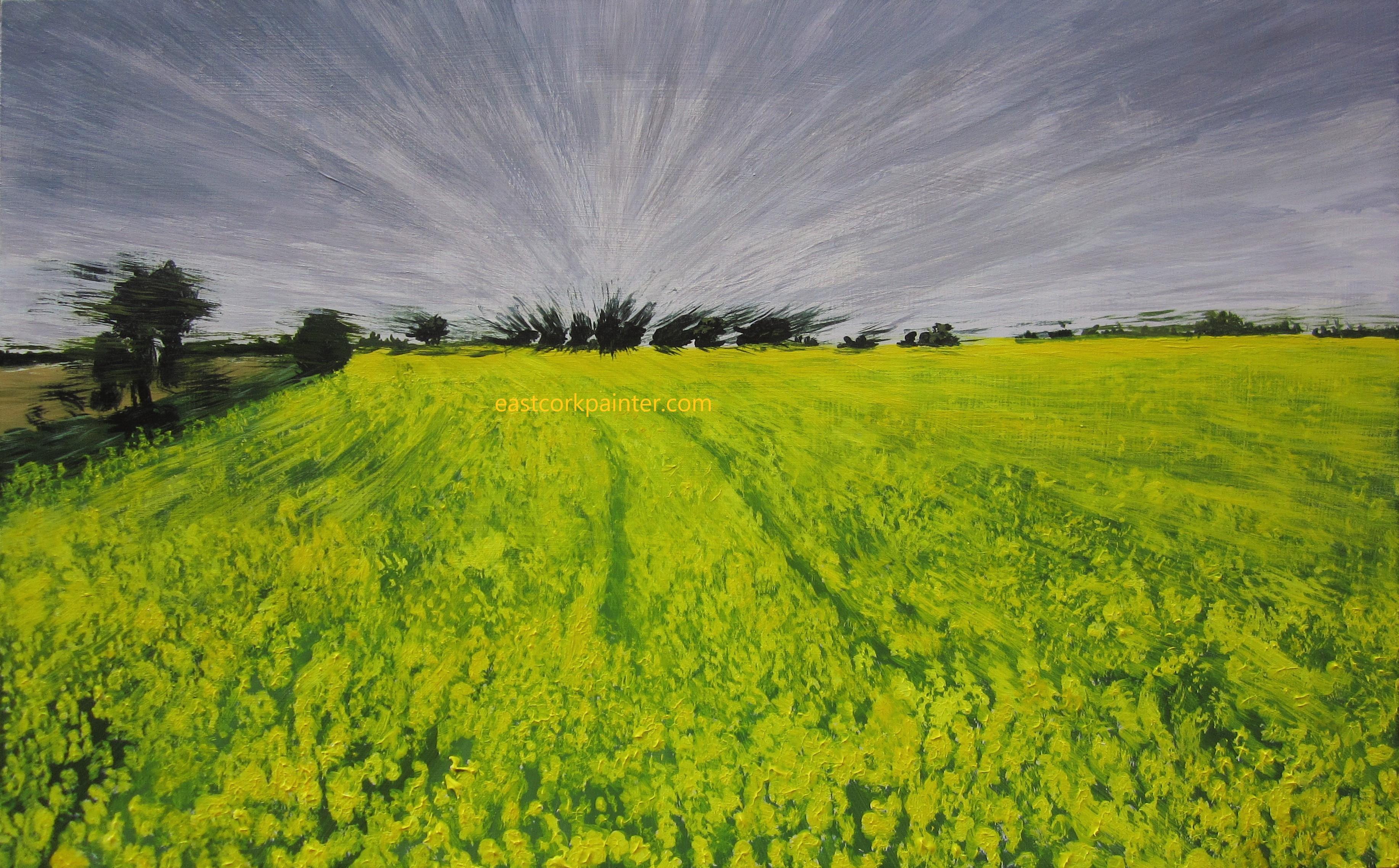 Oilseed rape field in Ballycotton watermark