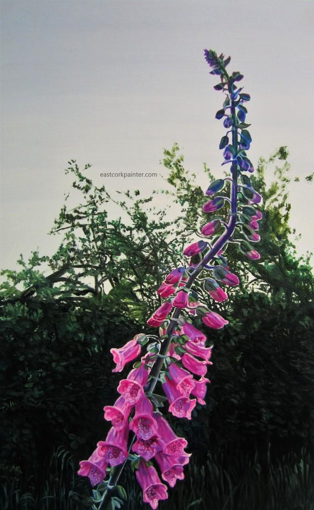 Foxglove 3 watermark