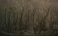 Sand Rivulet Trails watermark